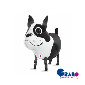"[Grabo balloons] Balloon friends_Boston Terrier 19""(48cm)"